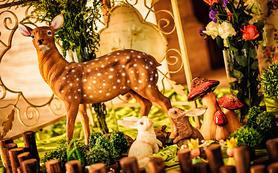 【婚礼购】偲蕊宴会定制基础套餐——花园时光
