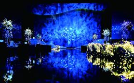【宝隆婚礼】含四大金刚运用灯光效果打造完美婚礼