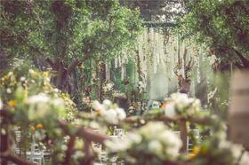 艾恩婚礼 | 绿野