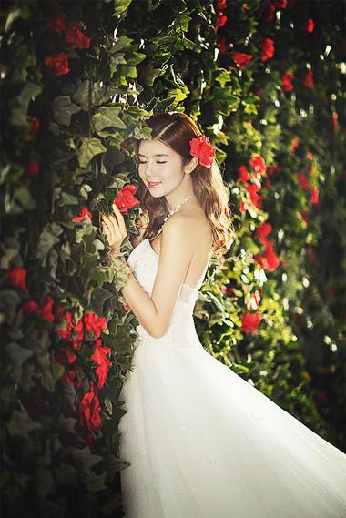 韩式森系婚纱摄影+蔷薇之恋