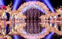 星光清新婚礼布置