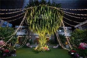 树之恋 清新户外婚礼