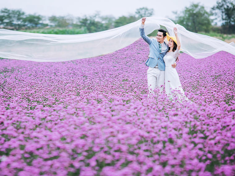 清新花海自然美照,精拍160+ 精修70张
