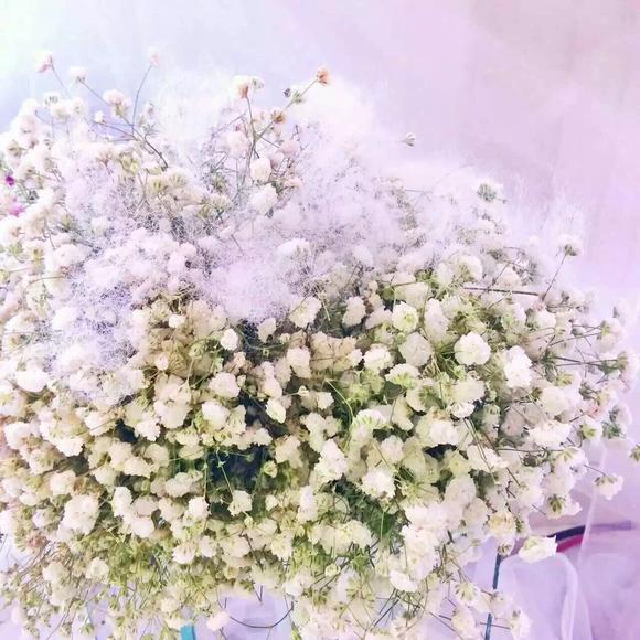 简 爱——鲜花婚礼策划