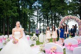 刘庄草坪婚礼跟拍