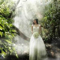 【1850婚纱摄影】订制森系绿野仙踪
