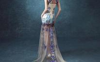 晚礼服新款女士大码蕾丝连衣裙小拖尾礼服M3001