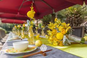 柠檬黄户外婚礼