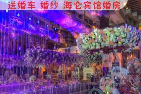 海仑宾馆康乃馨