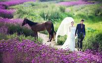 托斯卡纳独家外景婚纱照