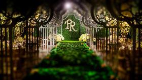绿野仙踪森系主题婚礼——简森先生