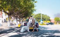 街拍婚纱照【梵尚视觉】香车美人