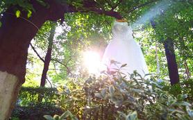 【卡蒂视觉】婚礼纪特惠 婚礼双机摄像影片