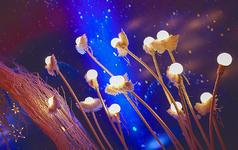 【嫁给幸福】星空风格--蓝紫色系