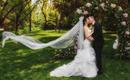 艾丽丝丨一站式丨森系主题婚礼
