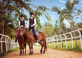 【纽约&马场主题婚纱照】骑士与马系列爵士帅气