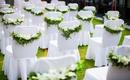 白色经典大众消费—-户外草坪婚礼