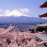 日本旅拍旗舰店