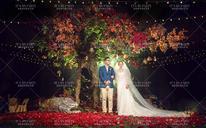 自由之树——森系婚礼风