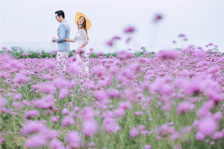 【海洋之星】婚纱样片欣赏 花海