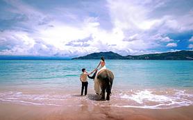 古摄影「普吉岛」-送大象拍摄+专车服务