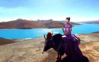「西藏」一对一拍摄服务+享专车服务+服装任选
