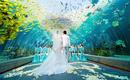 三亚海底世界 浪漫童话婚礼