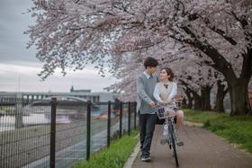 日本蜜月旅行樱花背景婚纱照