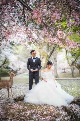 日本旅拍婚纱摄影样片