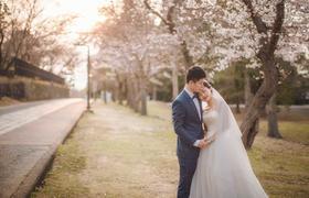 日本蜜月旅拍樱花婚纱照样片