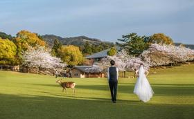 日本旅拍婚纱摄影作品
