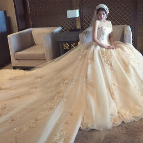 婚纱礼服2019新款新娘奢华长拖尾抹胸定制蕾丝花朵显瘦修身冬