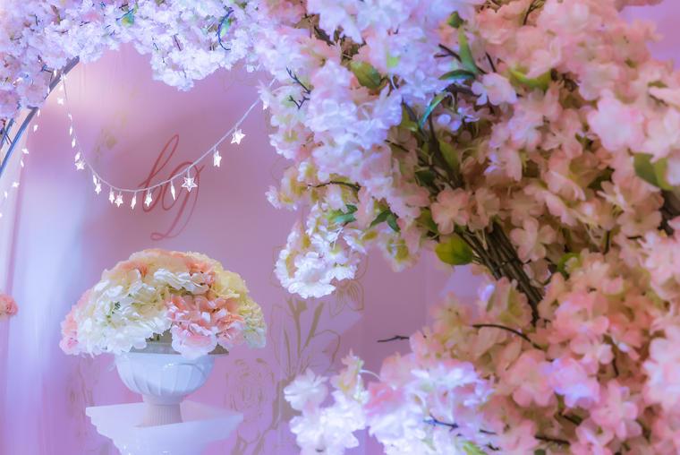 【乐达婚礼】-粉红色简约婚礼