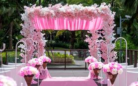 草地户外粉色婚礼 浪漫温馨 个性定制 主题蓝楹湾
