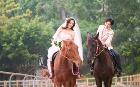 【花季新娘】马场婚纱照+薰衣草+城堡 5服5造
