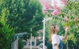剧情版婚礼MV(总监档2天)