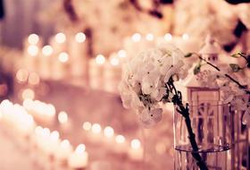 满天星语 (浪漫鲜花小型婚礼)