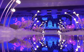 艾蜜尔婚礼—— 超值热卖---城堡主题婚礼