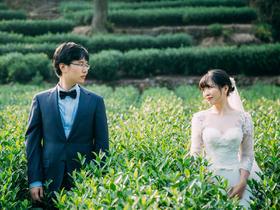 种影像客片 依偎茶田——杭州旅拍