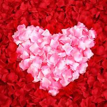婚礼喜房布置专用仿真玫瑰花瓣 花婚房装饰道具