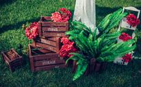 【薇莳】玫瑰花园rose garden婚礼风