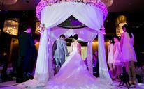 艾丽丝丨北辰洲际丨梦中婚礼