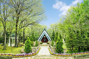 乐惟海外婚礼重庆店,日本那须高原森之教堂婚礼