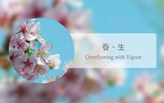 【爱式新文化】春·生(传统经典套系)