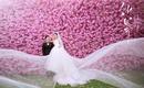 【自然风】春季浪漫樱花海甜蜜一生婚纱套系
