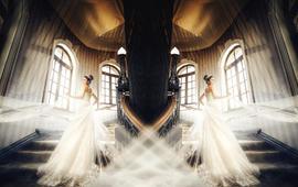 【岛主】双机摄影首席版,完美记录您的大婚