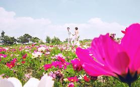 【西安爱久久婚纱摄影】燕尔花语