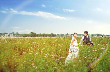 大视觉摄影春色满园花海主题婚纱照