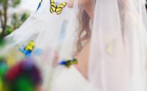 樱花唯美小清新婚纱照欣赏