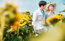 【名门婚纱】向日葵里的爱